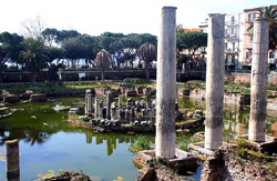 Phlegraean Fields Tour - The temple of Serapis in Pozzuoli